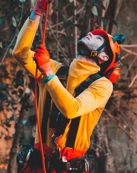 lavori_in_fune_Francesco_Trevisan_tree_climbing_alta_quota_alberi_ad_alto_fusto